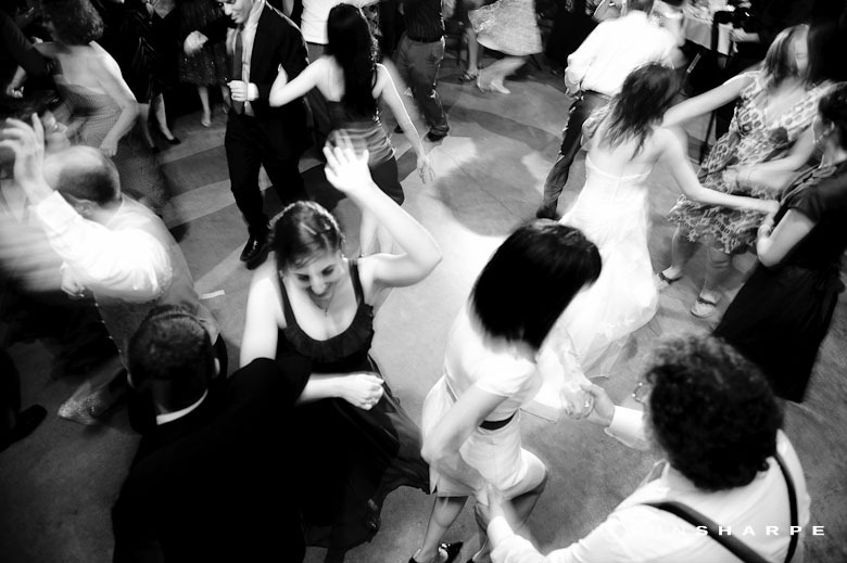 como-zoo-conservatory-wedding (42)