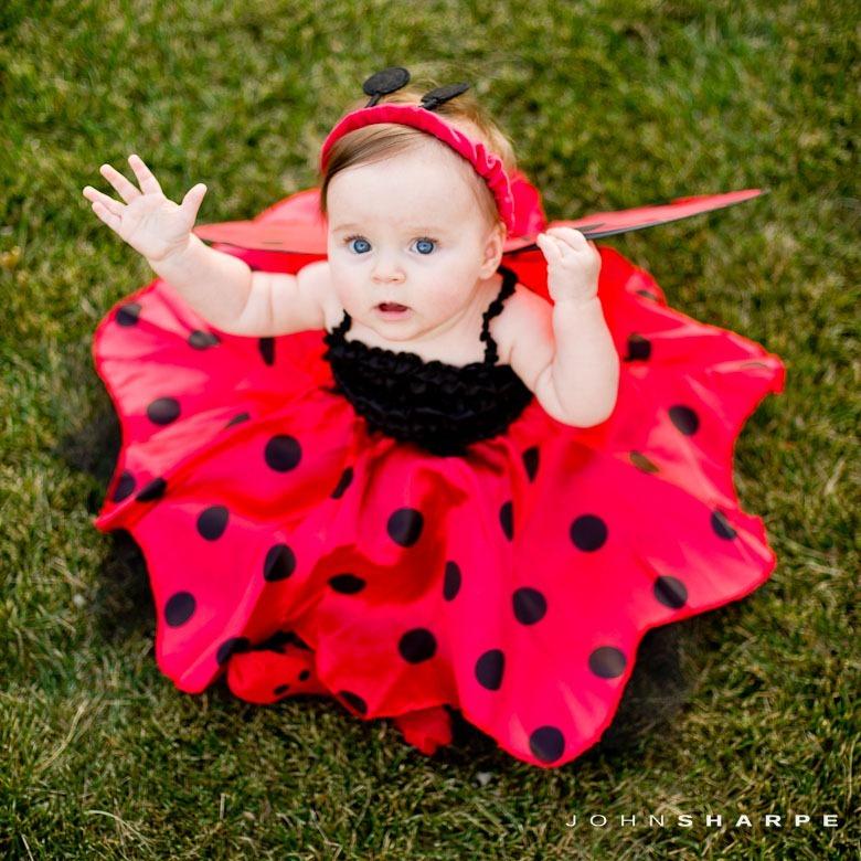 ... Baby-Ladybug-Halloween-Costume-2  sc 1 st  John Sharpe Photography & Rochester MN Family and Portrait Photographer u2013 John Sharpe ...