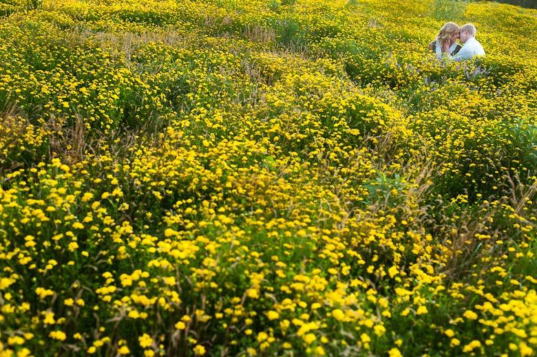 Minneapolis Wild Flower Engagement Photographer