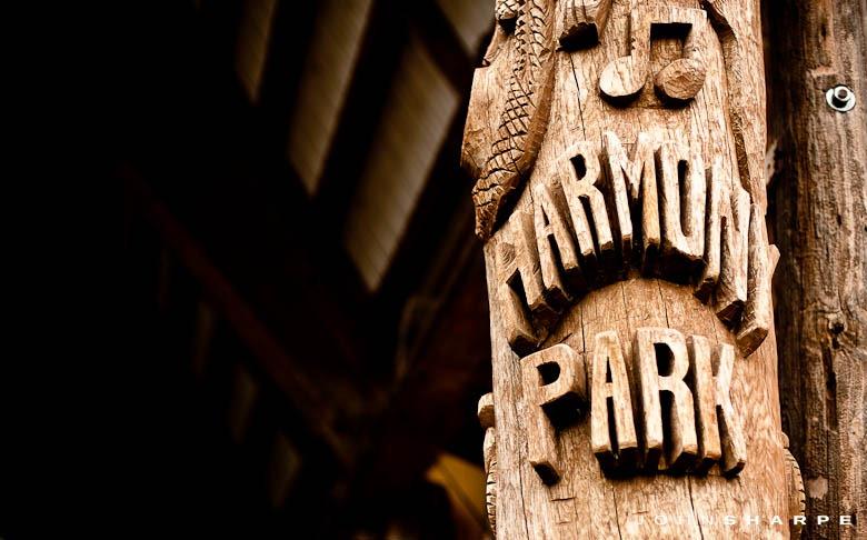 Harmony-Park-Wedding-1