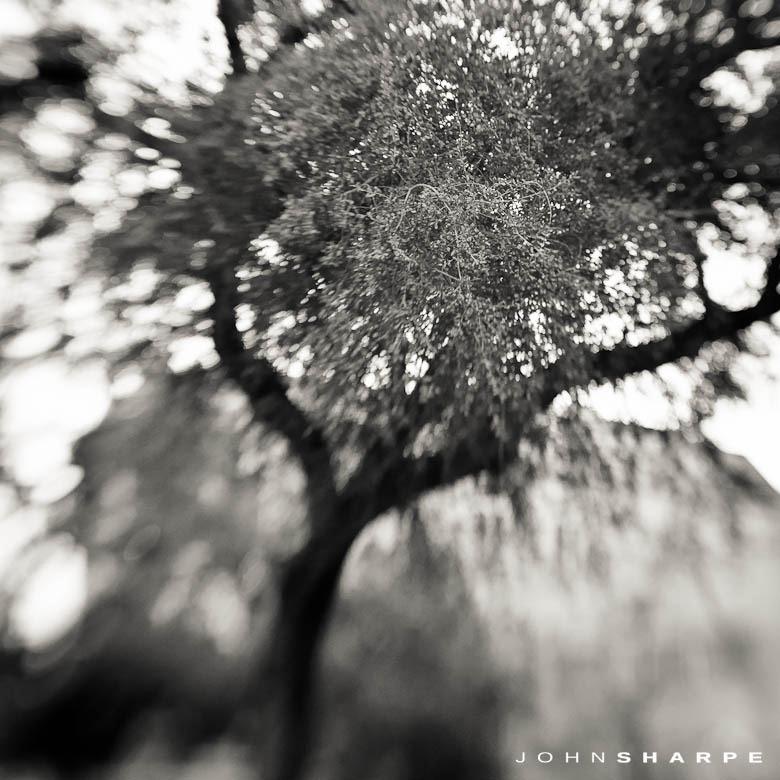 imaging-usa-san-antonio (11)